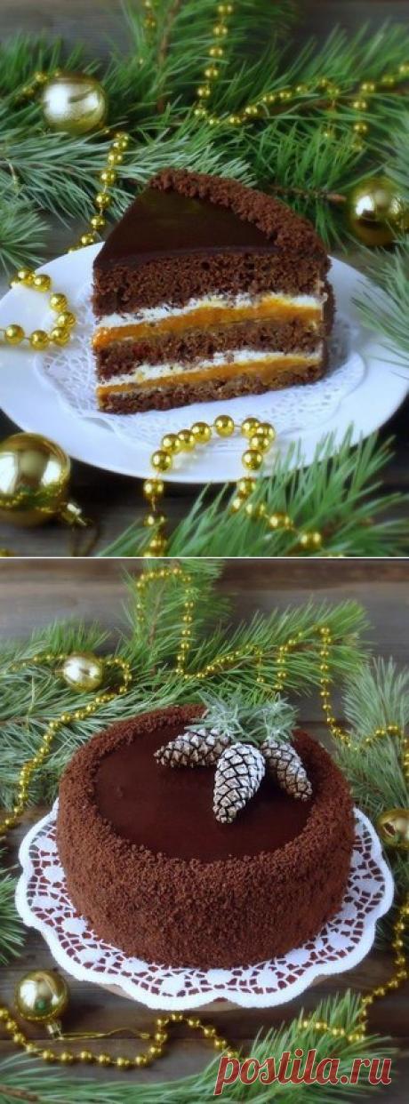 Шоколадный торт с курагой.