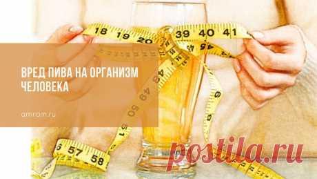 Вред пива на организм человека | Журнал Амром Вред пива на организм человека. Давно считается, что пиво негативно влияет на здоровье человека. Но на самом деле в этом продукте имеются не только недостатки,