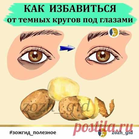 ЗОЖ 🔹️ ПП 🔸️ ФИТНЕС в Instagram: «🥔 Картофель — один из самых полезных продуктов для кожи век. ⠀ КАРТОФЕЛЬ СОДЕРЖИТ МАССУ ПОЛЕЗНЫХ ВЕЩЕСТВ 👇 ⠀ ✔АМИНОКИСЛОТЫ, в частности…»