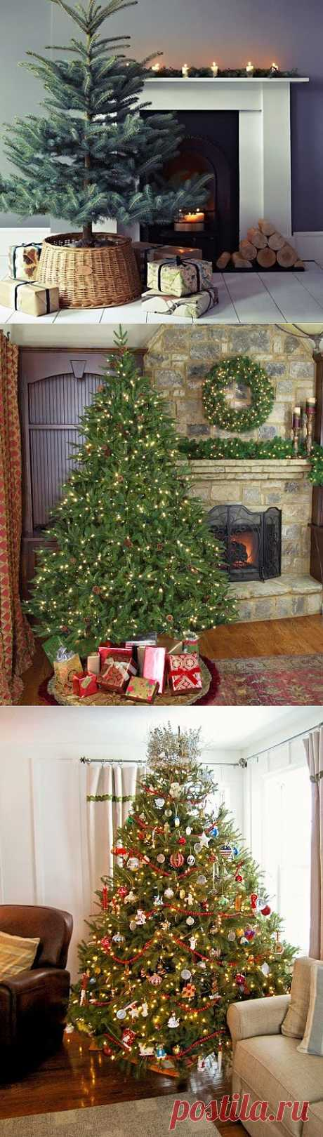 Stylish New Year trees ~ Sweet home