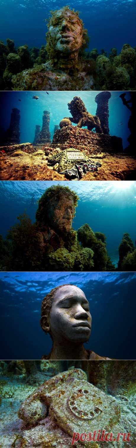 Подводные миры | Fresher - Лучшее из Рунета за день