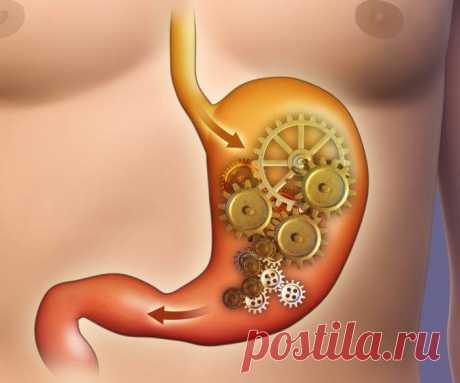 Язва, изжога, регулярный стул: 9 мифов о желудке и пищеварении Существуют факты, которые помогут разобраться с мифами, связанными с проблемами желудка и пищеварения, чтобы понять, когда есть серьезные поводы скорее посетить гастроэнтеролога.Миф 1. Острая пища и стресс приводят к язвеЭто неверно...