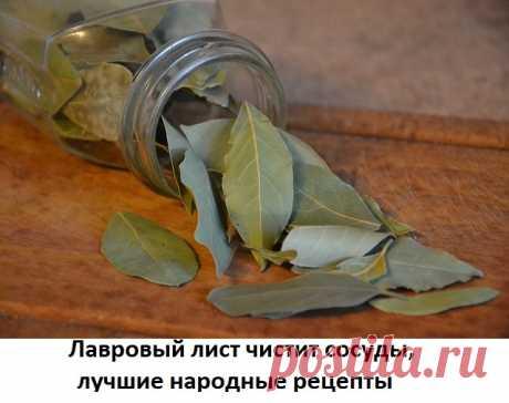 Чистка сосудов лавровым листом Эффективная чистка сосудов лавровым листом в домашних условиях. Рецепты отваров, настоев для очищения сосудов. Как происходит чистка сосудов лавровым листом.