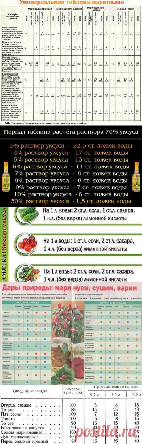 Как закрывать овощи на зиму = 5 универсальных таблиц