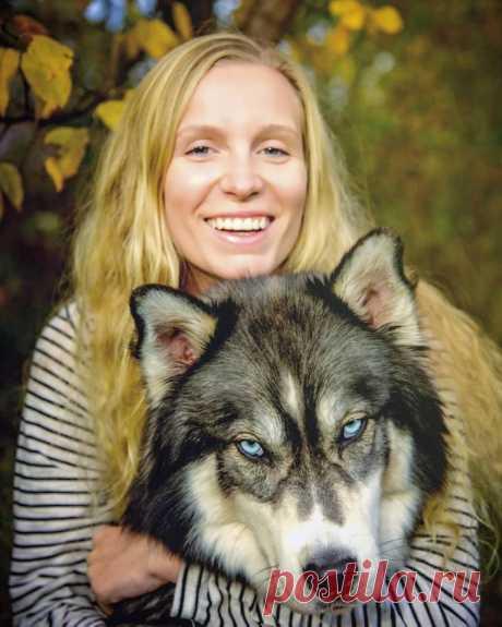 Como el perro y la muchacha han salvado uno a otro