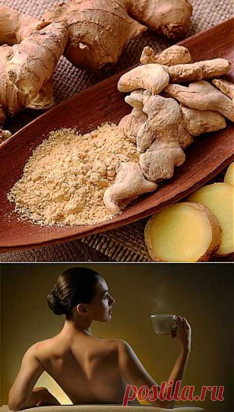 Ginger for health and beauty — useful properties   Useful tips