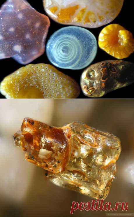 Песок под микроскопом : НОВОСТИ В ФОТОГРАФИЯХ