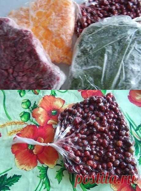 Отличный способ замораживания на зиму ягод, фруктов и овощей.