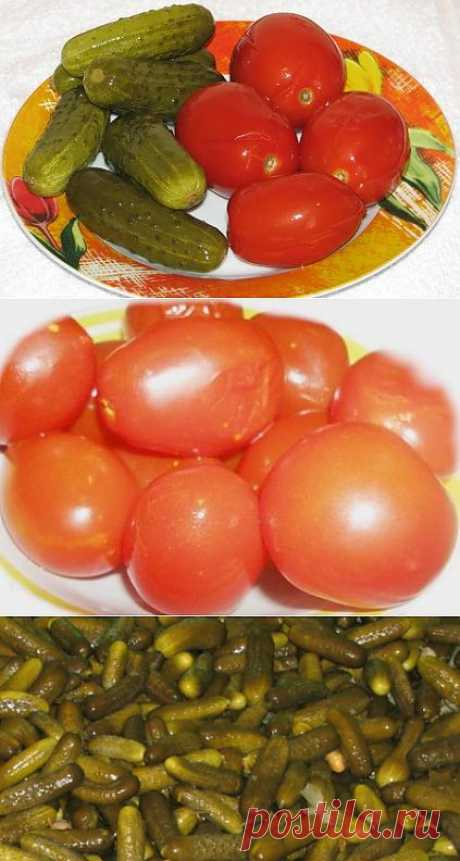 Fermented cucumbers and tomatoes without salt.