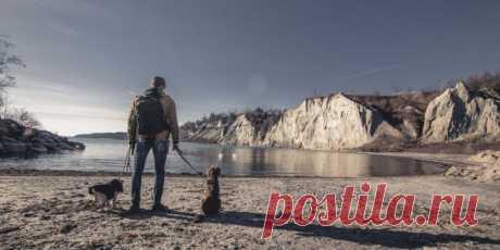 4 привычки, которые превратят вас в гения - Лайфхакер