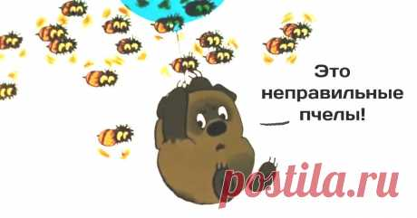Евгений Сатановский: Ну лугах Подмосковья в жару появились пьяные пчёлы. Нектар прямо в цветах бродит, пчёлы пьянеют..