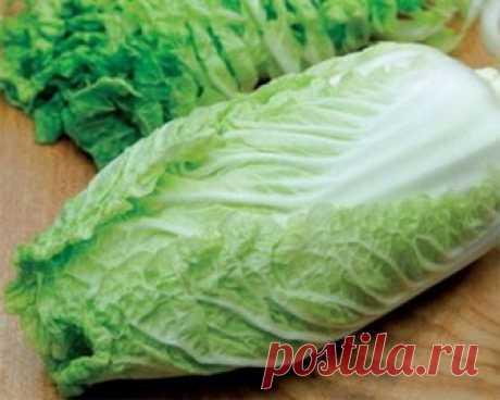 Именно с пекинской капустой получаются самые нежные салаты! Мы собрали для вас 6 лучших рецептов. Забирайте в коллекцию!
