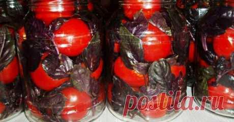 Помидоры, маринованные с базиликом - Со Вкусом