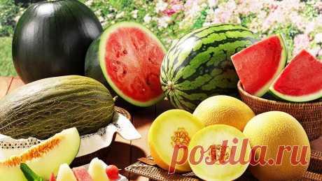 5 фруктов, которые стоит есть с косточками  ТОП-5 фруктов, чьи косточки также полезны, и их стоит есть вместе с мякотью.