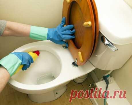 8 советов, которые помогут почистить унитаз
