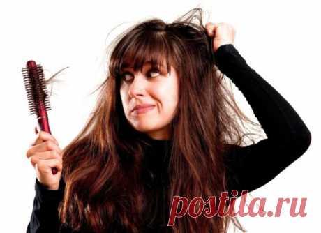 Что делать, если волосы выпадают? — Полезные советы
