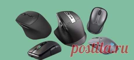 С дополнительными кнопками, сканером отпечатка пальца, RGB-подсветкой и другими полезными фишками.