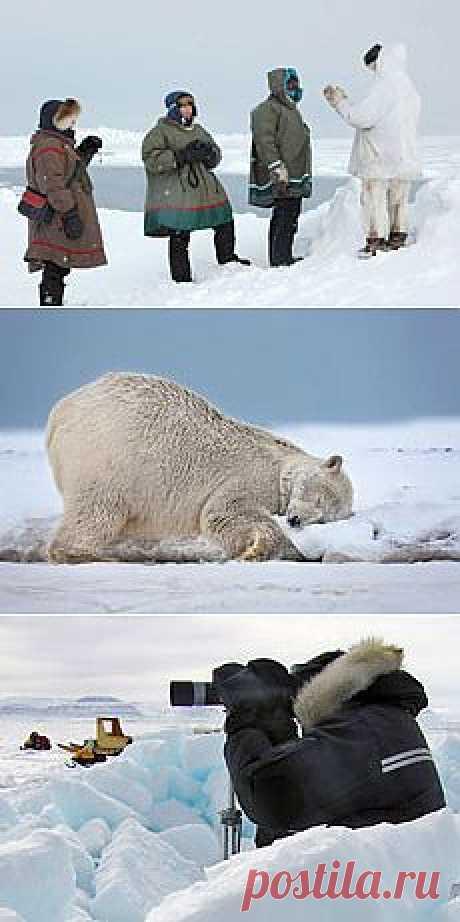 Особенности фотосъёмки зимой - советы начинающему фотографу  Многие начинающие фотографы, изучившие инструкцию своего  фотоаппарата, серьёзно озабочены проблемами зимней фотосъёмки: ведь в инструкции чётко написано, что их фотокамера не может снимать при отрицательной температуре! Неужели для фотосъёмки при отрицательной температуре воздуха нужны какие-то особенные фотоаппараты? Можно ли обычным фотоаппаратом сделать вот такие зимние фотографии?