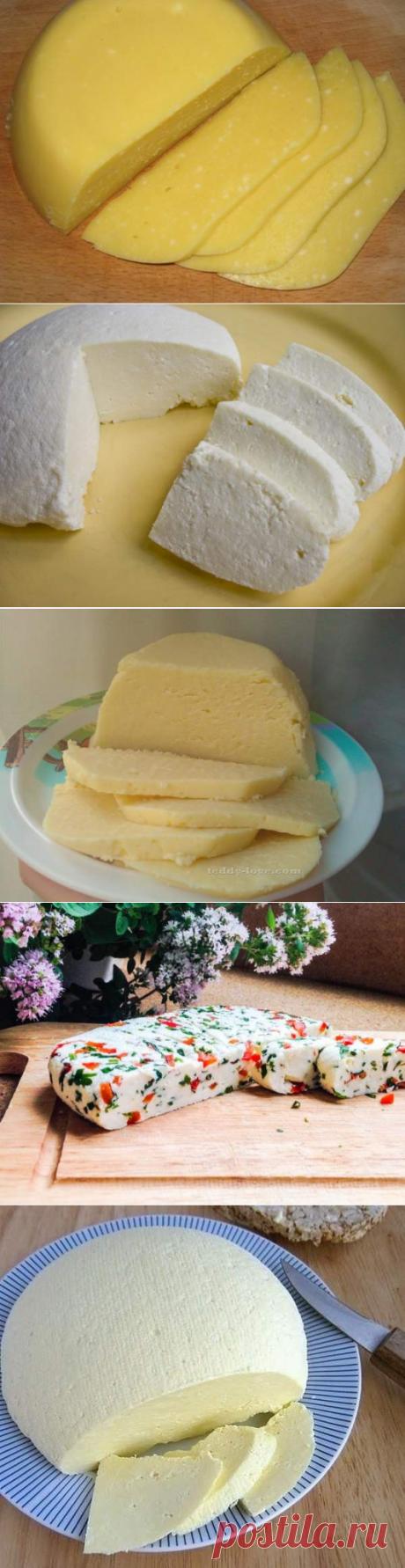 Большущая подборка рецептов домашних сыров - 20 вариантов приготовления