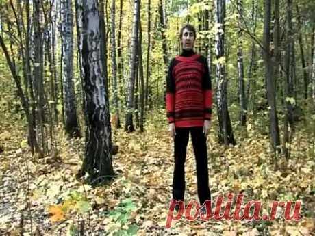УПР№11--ШАГИ-Дыхательная гимнастика Стрельниковой от всех болезней | Bodymaster О спорте и фитнесе | Яндекс Дзен