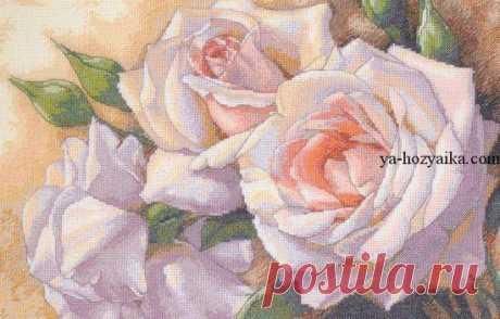 Розы схема для вышивки бесплатно. Схема для вышивки белые розы Розы схема для вышивки бесплатно. Схема для вышивки белые розы