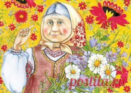 Мудрые советы от бабушки-травницы / Будьте здоровы