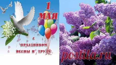 Здравствуй, Май! Цветущий май! С Днём Весны и Днём труда! Пусть сиренью расцветая В сердце к Вам придёт Весна! Дарит солнце луч рассвета, Щебетанье первых птиц! И летят пусть к Вам приветы От родных, любимых лиц!  Самое ценное в жизни - человеческое тепло. В любое время года.. В любом возрасте.. Оно никогда не бывает неуместным. Его никогда не бывает много..
