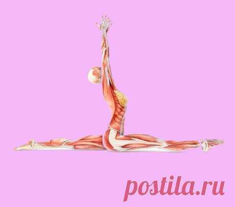 Эти 5 упражнений помогут проработать все мышцы всего за 10 минут!
