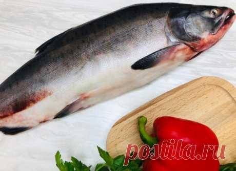 Если готовлю рыбу, то только так : хоть на ужин или обед, хоть на праздничный стол (делюсь простым рецептом) | Вязание и Рукоделие | Яндекс Дзен
