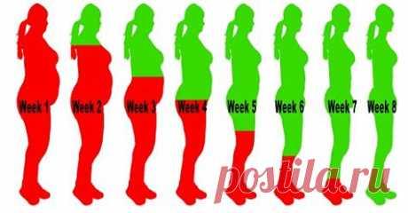 Как сжечь лишний вес за 8 недель с помощью этого напитка - Счастливые заметки
