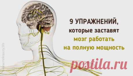 9 kineziologicheskih de los ejercicios, que harán el cerebro trabajar en...   Golbis