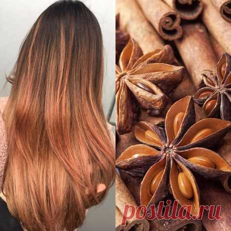 Hair Color Trends 2019: The Most Searched Top hair color 2019 trends Experiments with hair color trends 2019 know no boundaries. However, not everyone is willing to step into that game of constant change.