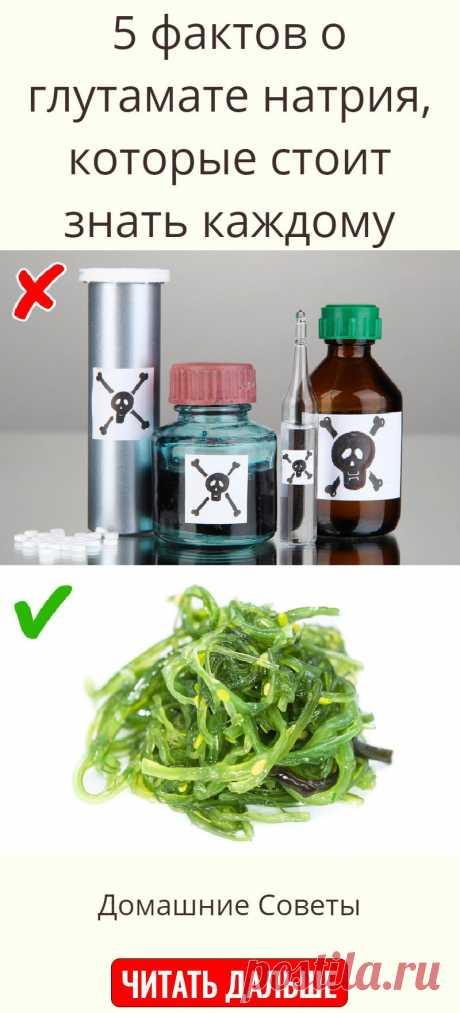 5 фактов о глутамате натрия, которые стоит знать каждому