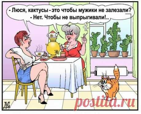 «Одноклассники» — карточка пользователя lyudmilka.belous в Яндекс.Коллекциях