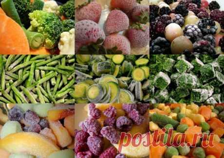 """El verano en la congeladora. """"Los acopios para el invierno: como congelar correctamente las frutas, las bayas y hortalizas"""" — En RITM_ ZHITTYA"""
