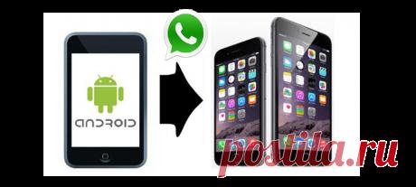 Синхронизация WhatsApp в Android и iOS: Вам нужна Синхронизация WhatsApp? Сейчас WhatsApp разрабатывает новую функцию. Которая позволи
