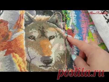 Волки от JoySanday( копия Дименшенс), продвижение