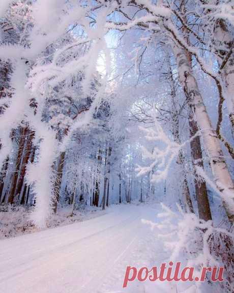 Увидеть бы такую сказочную красоту этой зимой 😍😌