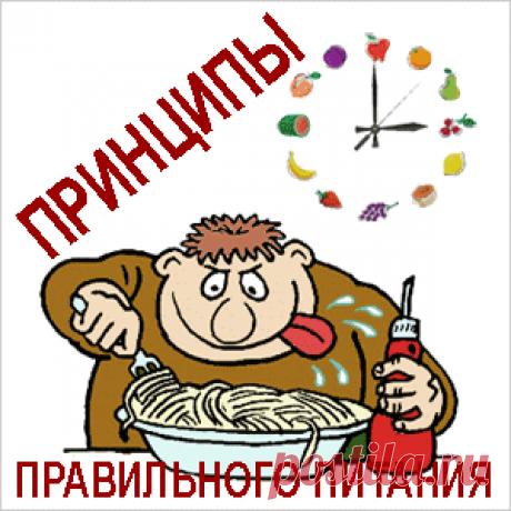 b95696b3c086 Диетология  принципы правильного питания   Рецепт здоровья