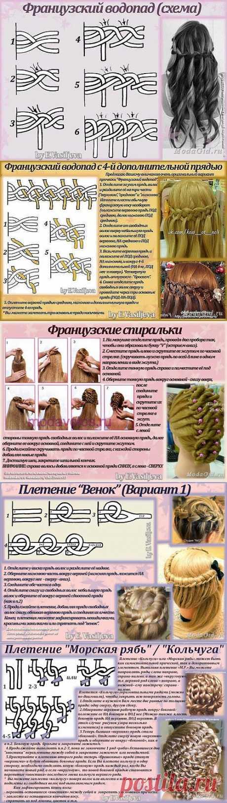 Плетение французских кос (схемы, описания).