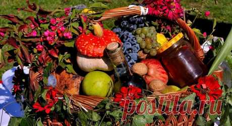Каких витаминов не хватает, если чего-то очень хочется съесть? Шпаргалка для беременных, худеющих и всех остальных   От 0 до 6   Яндекс Дзен