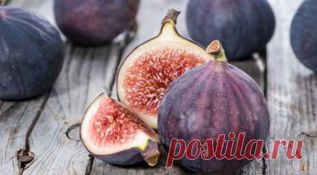 Идеальное средство от лишнего веса, холестерина, стресса и кашля - Образованная Сова