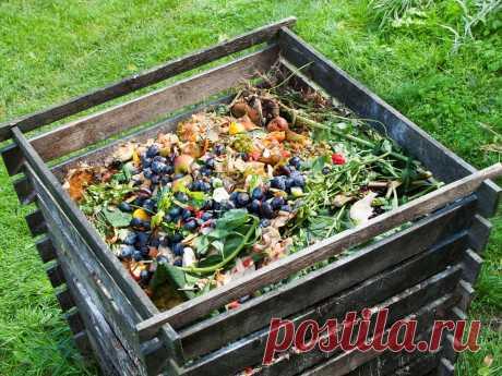 Отходы несем в огороды - медиаплатформа МирТесен
