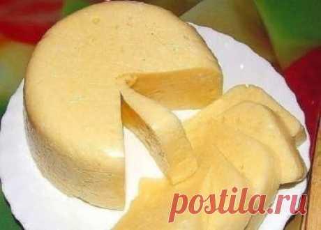 Невероятно вкусный домашний сыр за 3 часа — все натуральное и полезное! Вам понравится!   Ингредиенты: молоко — 1 литрсметана — 200-300 г.яйца — 3 штукисоль — 1 ст.л. Приготовление:  Ставим молоко на огонь, добавляем соль.Пока взбиваем сметану с яйцами.Когда молоко закипи…