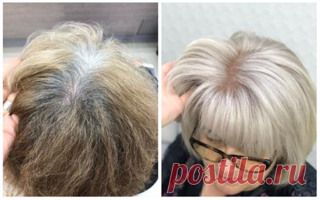 Всё, что нужно знать про седые волосы и их окрашивание: коротко и простыми словами | beauty viewer | Яндекс Дзен