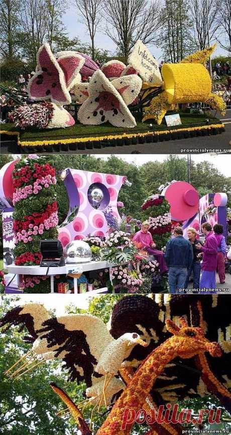 Парад цветов в Аалсмеере. Праздник цветов в Голландии