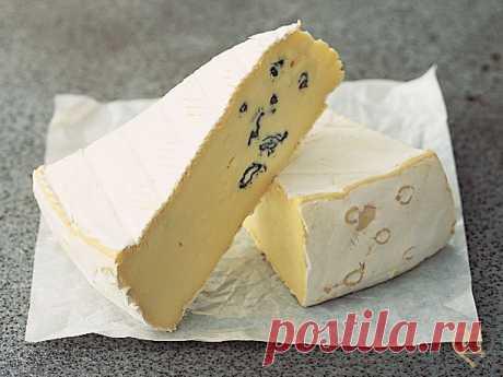 Рецепт сыра Камбоцола. Камбоцола - это просто рай для любителей сыров с плесенью. Умопомрачительно нежное комбо из сливок, нежного шампиньонового вкуса белоснежной корочки и острых, пикантных вкраплений голубой плесени. Само наименование сыра говорит о сочетании двух самых вкусных сыров с плесенью: белого Камамбера и голубой итальянской Горгонзолы. | абажуры крючком ажур с косами спицами
