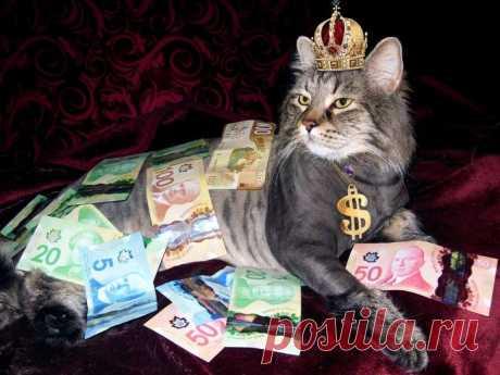 Знаки зодиака, дарящие богатство - Гороскоп - медиаплатформа МирТесен