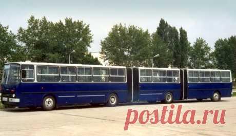 Самый длинный Ikarus: как венгры сделали трёхсекционный автобус