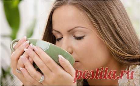 Зелёный чай: польза и вред для организма человека